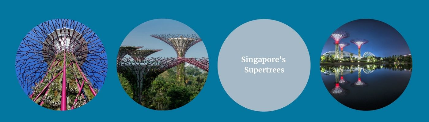 Singapore's Supetrees