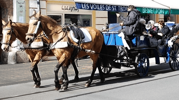 Horse and Carriage Austria Best Christmas Markets