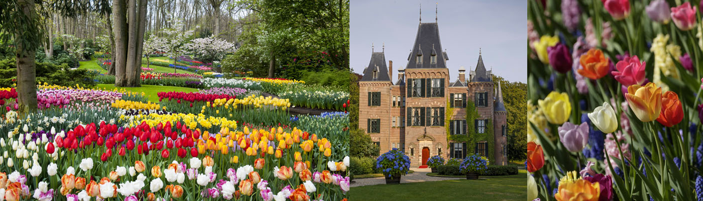 The Gardens of Keukenhof