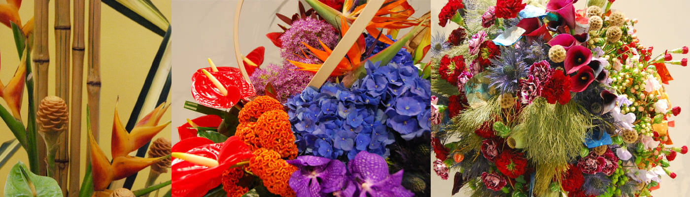 ECT Travel Partnership with NAFAS  National Association of Flower Arrangement Societies i